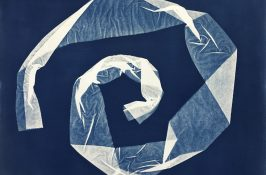 Photography & Cyanotype | Family Workshop